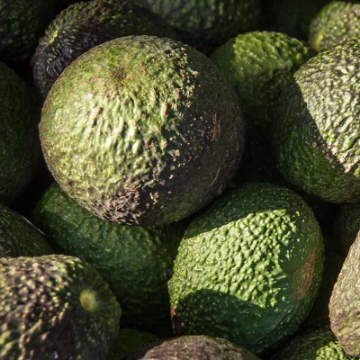 A like Avocado vegetable oil (Persea gratissima)
